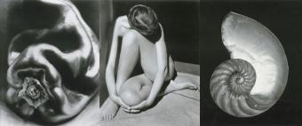 Peppers and Nudes - The Photographer Edward Weston